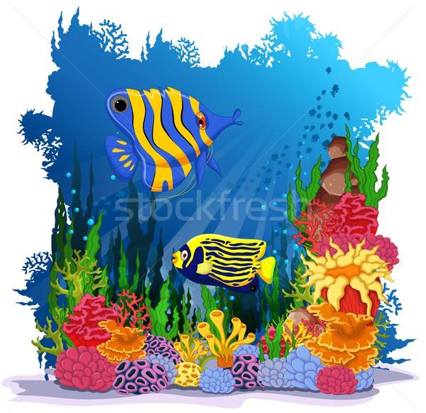 angel fish with sea life background Stock photo © jawa123