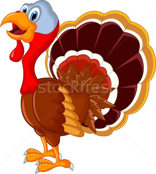 Boldog Törökország rajz terv madár űr Stock fotó © jawa123