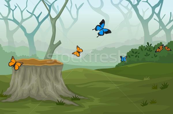 Divertente farfalla profondità foresta panorama legno Foto d'archivio © jawa123
