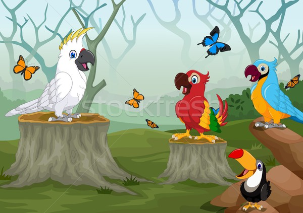 funny birds cartoon with deep forest landscape background Stock photo © jawa123