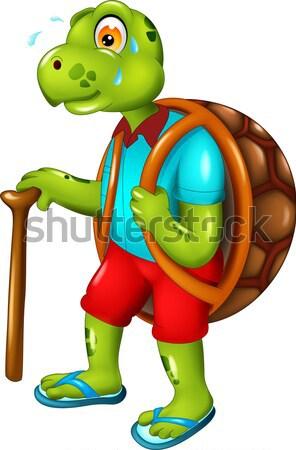 Sevimli kaplumbağa karikatür yürüyüş sopa çocuk Stok fotoğraf © jawa123