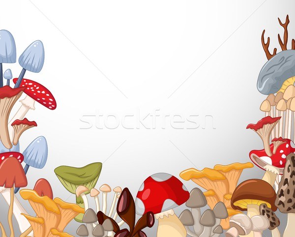 different kinds of mushrooms on white background Stock photo © jawa123