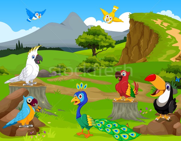 funny different kind of birds cartoon the jungle with landscape background Stock photo © jawa123