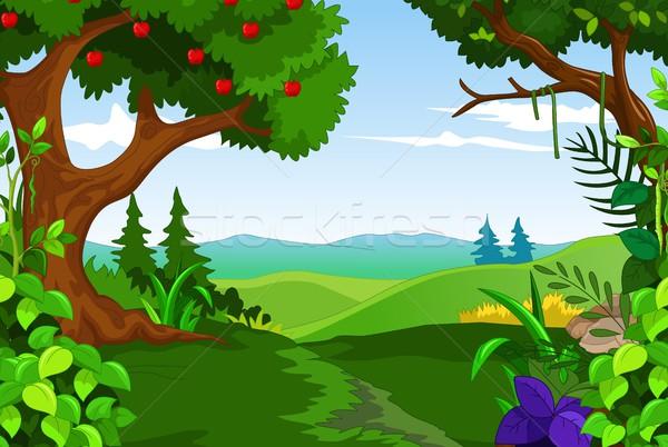 пейзаж лес небе трава природы деревья Сток-фото © jawa123
