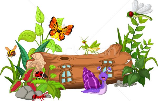 Gyűjtemény rovarok rajz háttér ablak piros Stock fotó © jawa123