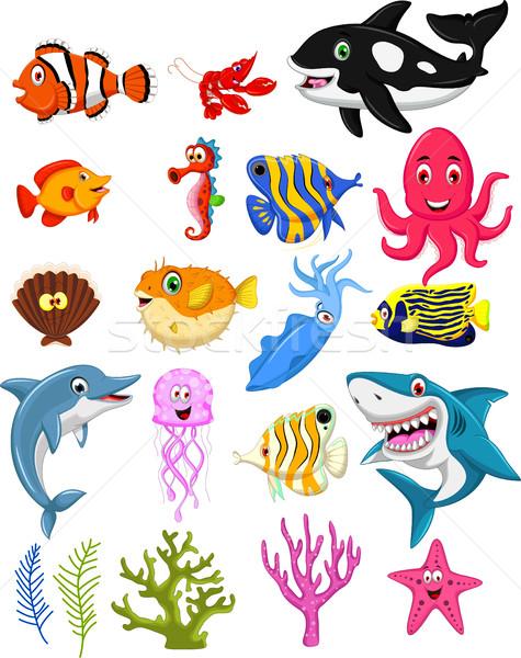Tenger élet rajz gyűjtemény óceán kék Stock fotó © jawa123