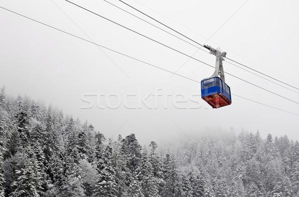 Forêt atmosphère saison d'hiver arbre nuages nature Photo stock © jaycriss