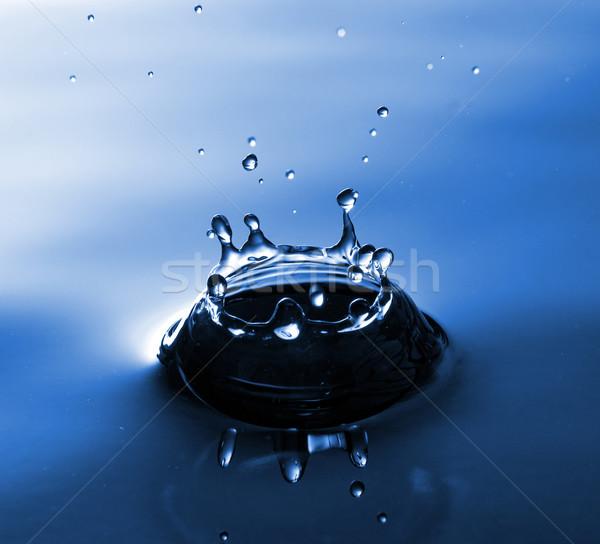 синий корона аннотация природы дождь Сток-фото © jaycriss