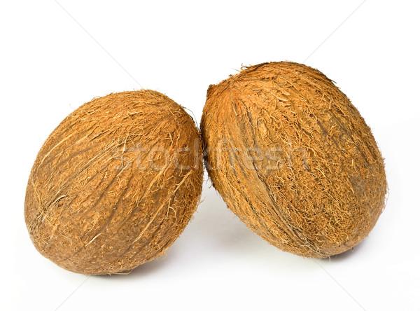 Deux noix de coco isolé blanche tropicales coco Photo stock © jaycriss