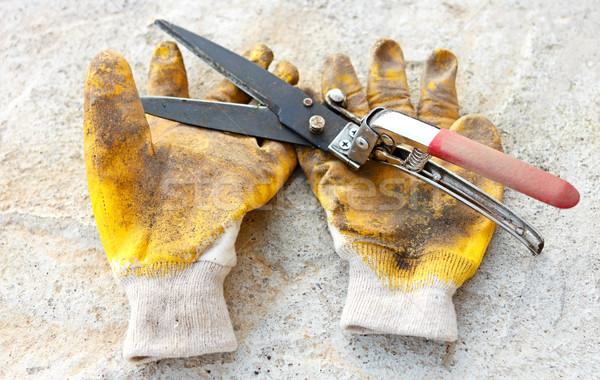 садоводства ножницы грязные желтый перчатки рабочих Сток-фото © jaycriss