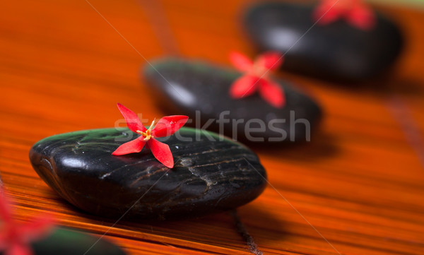 Rij zwarte rotsen rode bloemen spa massage Stockfoto © jaykayl