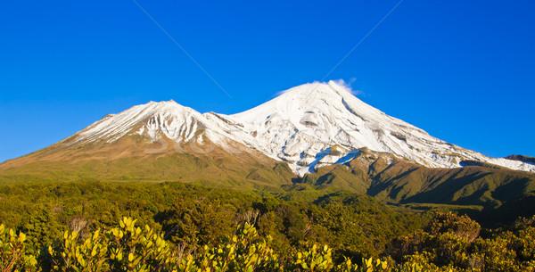 Новая Зеландия покрытый снега красивой Blue Sky небе Сток-фото © jaykayl