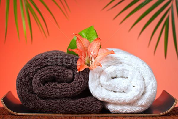 Luxe bad handdoeken spa massage stilleven Stockfoto © jaykayl