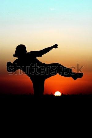 Sunset Martial Arts Stock photo © jaykayl