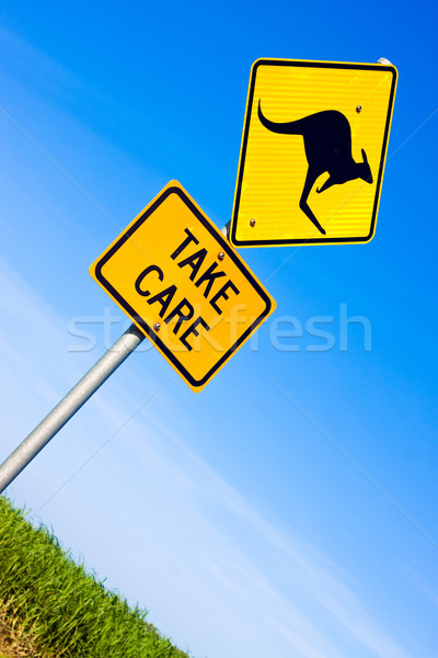 Közelkép kenguru jelzőtábla út figyelmeztető jel kék ég Stock fotó © jaykayl