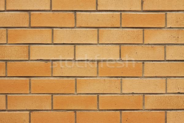 クローズアップ レンガの壁 画像 オレンジ 家 建物 ストックフォト © jaykayl