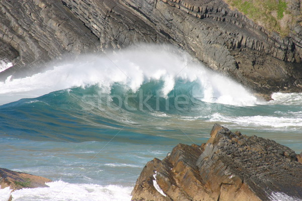 powerful wave Stock photo © jeayesy
