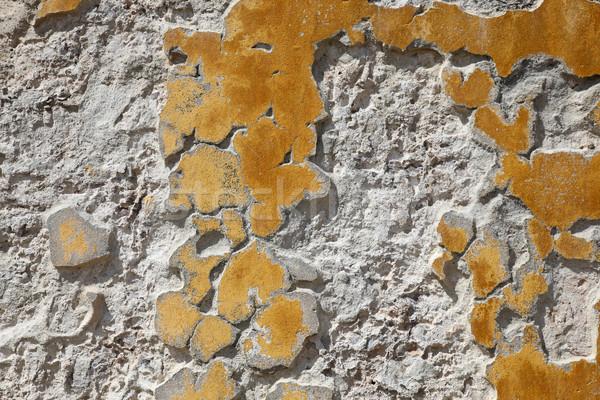 Crumbling Wall Stock photo © jeayesy