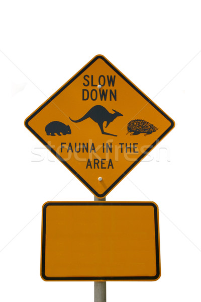 Slow down fauna sign isolated on white Stock photo © jeayesy