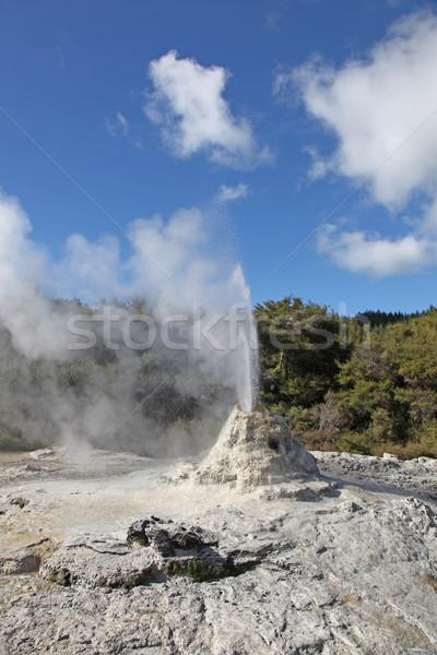 Dama géiser Nueva Zelandia popular atracción región Foto stock © jeayesy