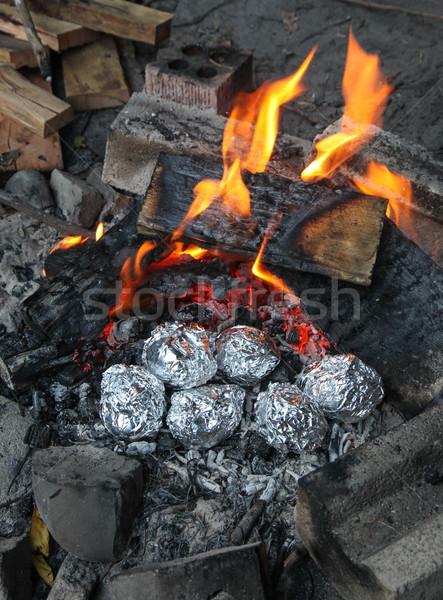 Sült krumpli tábortűz főzés tábor tűz Stock fotó © jeayesy