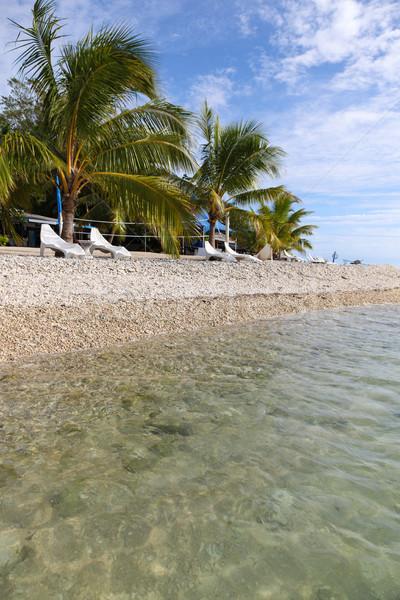 Vanuatu - Tropical Beach Stock photo © jeayesy