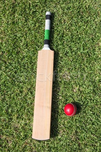 Cricket bat and ball on green grass Stock photo © jeayesy