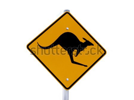 kangaroo sign Stock photo © jeayesy