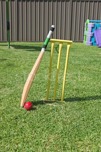 Udvar krikett felszerlés ausztrál fű jókedv Stock fotó © jeayesy