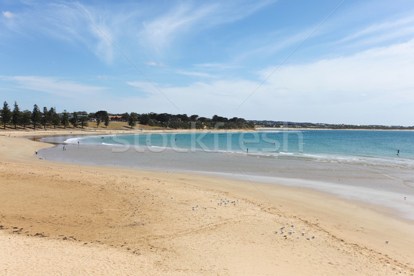 Torquay Main Beach - Torquay Victoria Australia Stock photo © jeayesy