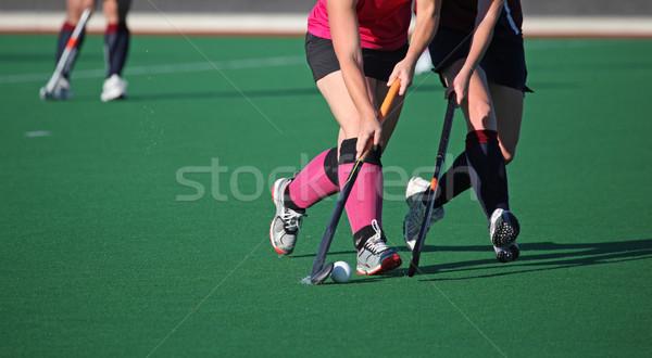 二人の女性 プレーヤー ボール ゲーム ストックフォト © jeayesy