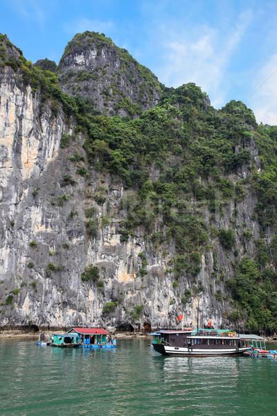 Vietnam norte famoso muchos alto caliza Foto stock © jeayesy
