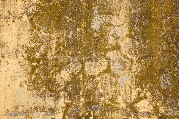 Weathered Wall Background Stock photo © jeayesy