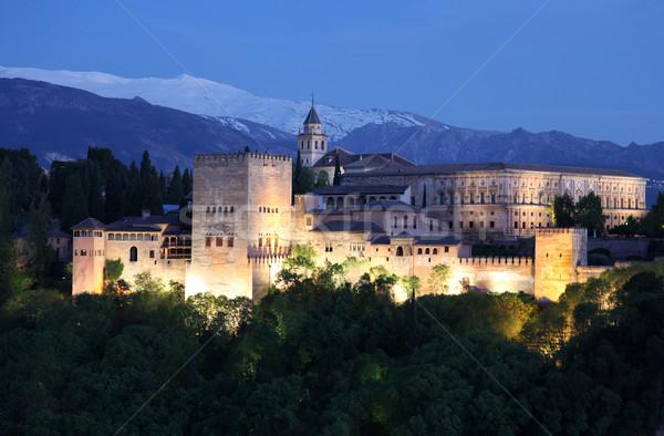 アルハンブラ宮殿 スペイン 表示 黄昏 ツリー 建物 ストックフォト © jeayesy