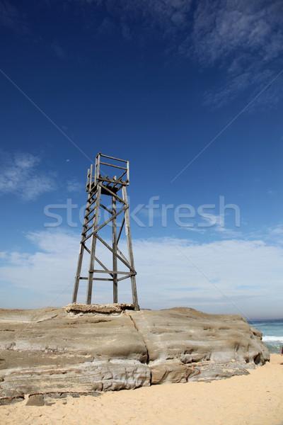 Vörös hajú nő tengerpart Newcastle Ausztrália cápa torony Stock fotó © jeayesy