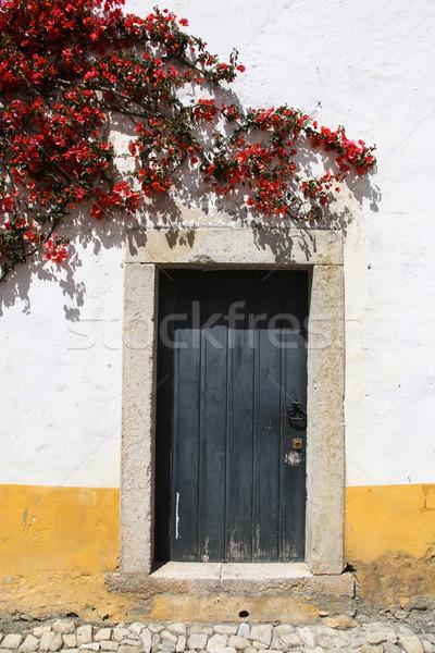 Deuropening traditioneel witte stijl muur bloemen Stockfoto © jeayesy