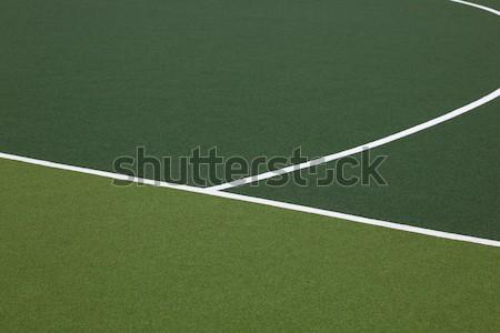 Jégkorong mező részlet zöld fehér szabadtér Stock fotó © jeayesy