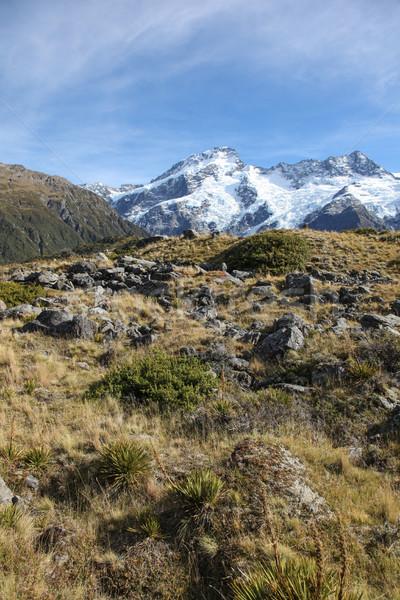 New Zealand Snow Capped Mountains Stock photo © jeayesy
