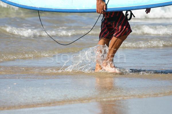 Afgewerkt surfen surfer bladeren water zomer Stockfoto © jeayesy