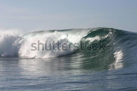 Tubo onda Samoa sul mar Foto stock © jeayesy