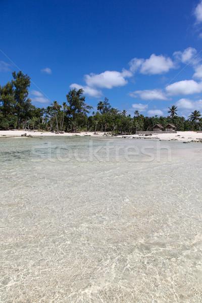 Eton Beach Vanuatu - Tropical scene in the South Pacific Stock photo © jeayesy