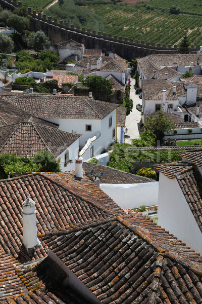 Obidos rooftop view Stock photo © jeayesy