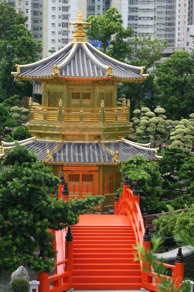 Cinese pagoda Hong Kong tradizionale giardino albero Foto d'archivio © jeayesy