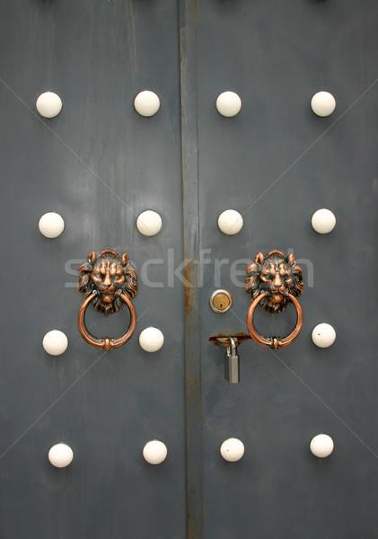 Kínai stílus ajtók szürke oroszlán fém Stock fotó © jeayesy