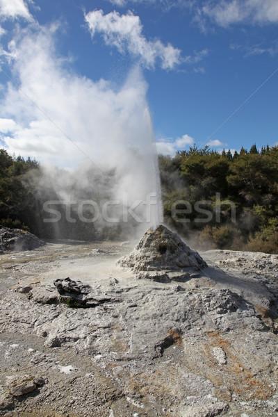 Hölgy gejzír Új-Zéland népszerű attrakció régió Stock fotó © jeayesy
