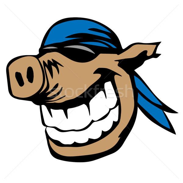 Bonitinho sorridente porco óculos de sol desenho animado engraçado Foto stock © jeff_hobrath