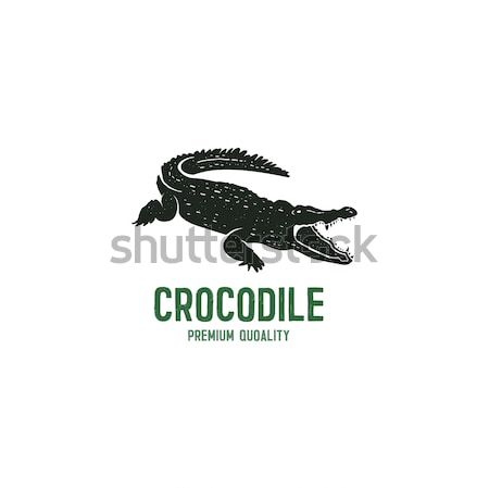 crocodile logo template. Symbol of alligator, Crocodile with text. Wild animal typography badge desi Stock photo © JeksonGraphics