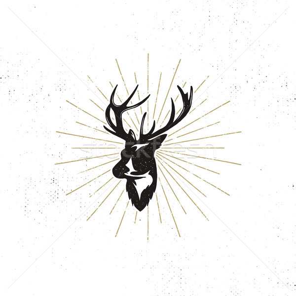 Hand drawn deer s head label. Vintage black silhouette of Deer head with antlers, sunbursts isolated Stock photo © JeksonGraphics
