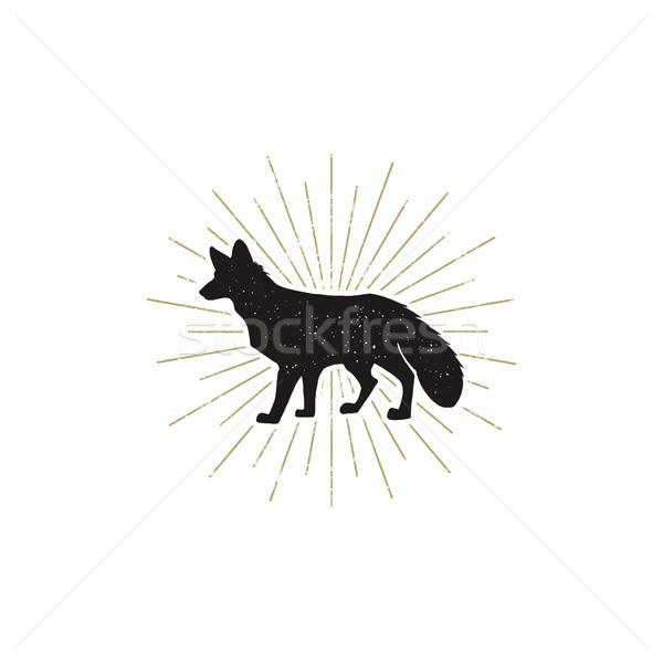 Kézzel rajzolt róka sziluett illusztráció klasszikus fekete Stock fotó © JeksonGraphics