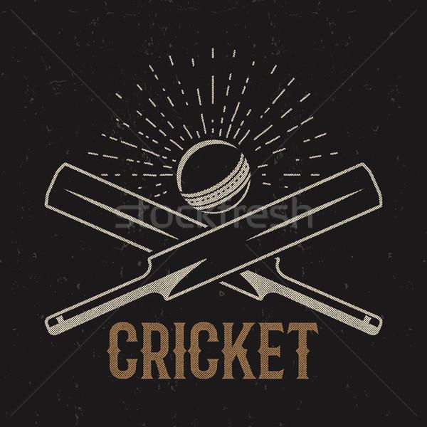 Retro krikett klub embléma terv logo Stock fotó © JeksonGraphics